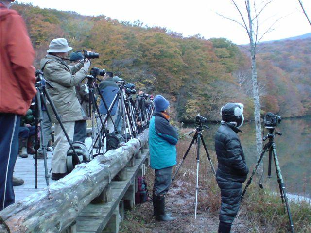 【レンズ沼】カメラにまつわる「沼」の話 ...